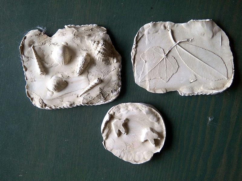 legambiente sernaglia calchi di fossili